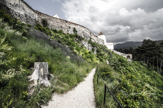 Rasnov Citadel.