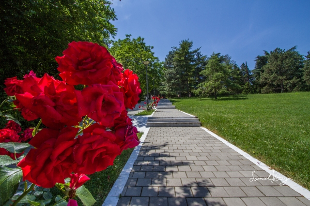 Walking towards the House of Flowers.