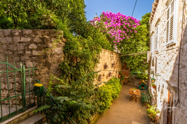 Beautiful patio in one of the many houses in Dubrovnik.