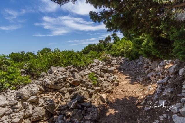 Path leaving Fort Royal.
